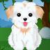 可爱的小狗关怀 - 宠物沙龙