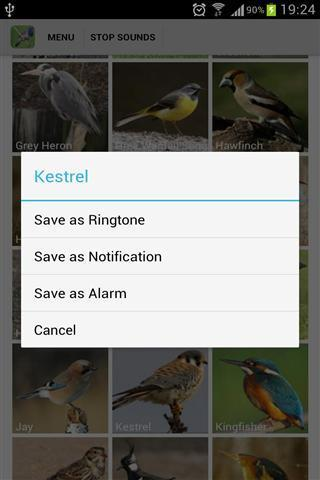 英国鸟类的声音APP截图