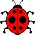 甲虫历险记